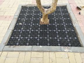 拼装式树蓖子