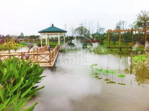 成都锦胜水景花园池塘人造水雾景观喷雾设备