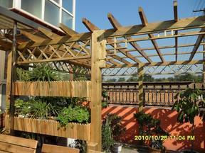 望江南高端环保花园木 可按需加工 樟子松防腐木 木板材