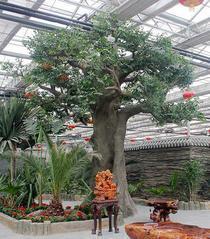 烟台假树生态园榕树景观雕塑制作