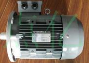 意大利ELECTRO ADDA原装进口电机EG160M-4