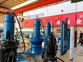 天津600QZB-110K大流量轴流泵-高品质轴流泵生产厂家