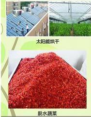 辣椒太阳能烘干系统