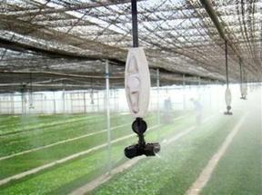 生产批发温室微喷灌溉-育苗土壤-育苗基质等