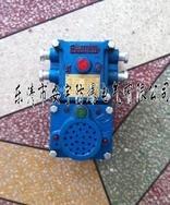 KXH127(36)-(A)隔爆型兼本质安全型声光语言报警器(通信声光信号器)