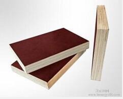 来宾建筑模板(九层板)工程模板