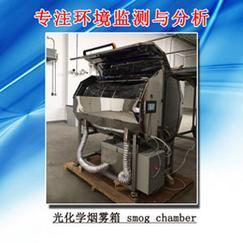 北京烟雾箱生产厂家康威能特环境