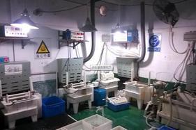 电镀厂污水高分子絮凝剂阴离子