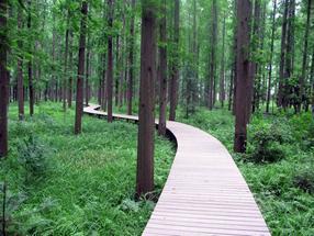 贵阳塑木地板,重庆木塑地板,成都户外景观木地板木栈道安装施工厂家