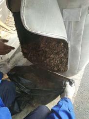 内蒙古吸树叶机(FH-6580)物业手推吸叶机带粉碎功能厂家供应