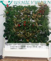 都市绿缘2016可移动新款垂直花园绿植壁画植物墙