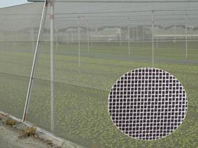 防尘网防虫网遮阳网厂家直销各种规格接受定制