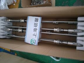 上海硕馨烟气脱硝SNCR喷枪厂家