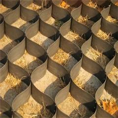 土工格室固土攔壩 高分子土工格室植草 蜂巢格室廠家直銷 定制HDPE蜂巢格室