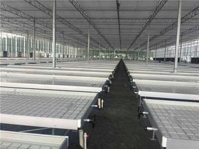 潮汐苗床潮汐式灌溉系统自动化育苗哪家好