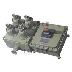 BX防爆照明(动力)配电箱 检修电源插座箱