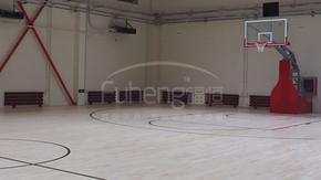 进口的篮球木地板厂家