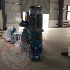 HSNK20L38ZM0润滑油泵厂家