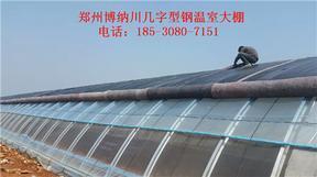 商丘新型阳光板温室建造,全方位服务找博纳川