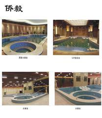 承建温泉喷池 水疗池 温泉池 专业工人施工