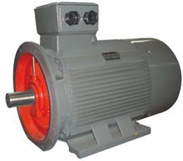 小型低压电机--长沙电机厂有限责任公司