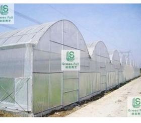 供应30目防虫网--驱虫网--杀虫网--常州绿盛园艺