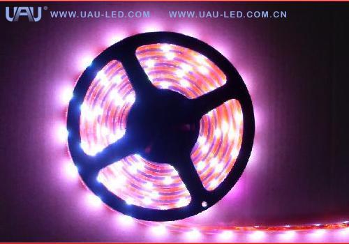供应LED软光条、LED柔性光条、LED灯带、LED灯串