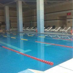 游泳池水�理