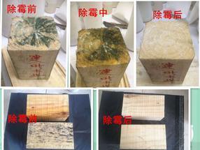 木材除霉剂MF-11