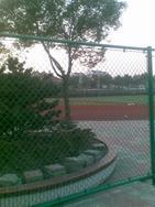 供应操场护栏网体育场围栏网勾花护栏网