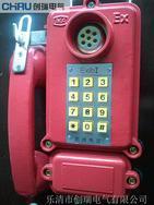 上海BDH防爆电话厂家