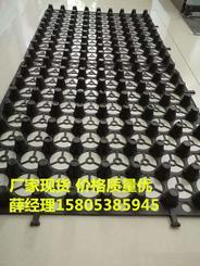 邢台丨扬州3公分蓄排水板+车库种植排水板