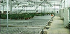 温室物流式育苗移动苗床经久耐用现货批发