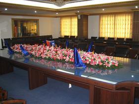 广州会议花卉植物租摆