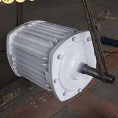 并网监控用风力发电机 500w直驱发电设备
