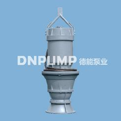 天津泵站改建|城市防洪|应急|抗旱大流量潜水混流泵厂家