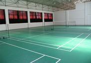 羽毛球场地板专业羽毛球场馆内地施羽毛球垫