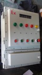 BXK防爆控制箱 防爆控制配电柜 防爆箱钢板