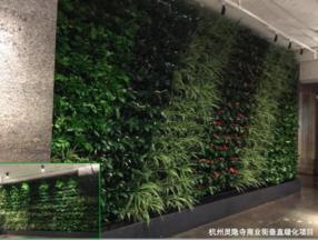 垂直绿化系统