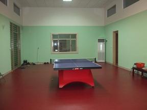 塑胶pvc软板#乒乓球室内地板安装#乒乓球地板胶含安装价格