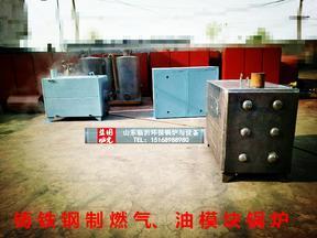 山东临沂蓝诺燃气锅炉 洗浴燃气锅炉 模块燃气锅炉 供暖洗浴锅炉
