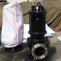 污水泵高扬程生产厂家