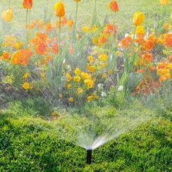雨鸟喷灌 Xerigation® 微灌系统的技术