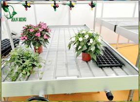 山西温室专用苗床网_潮汐苗床育苗设备厂
