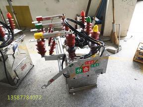 ZW8-12G/630A柱上高压真空开关电动带隔离报价