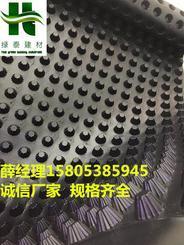宿迁(天津)10mm高2.5公分车库排水板