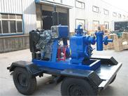 BYZCS移动式柴油机自吸排污水泵