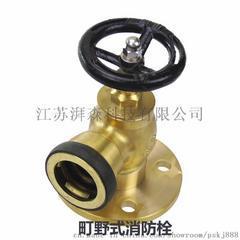 CCS铜消火栓 带CCS证书