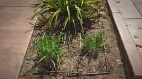 PLD专业园林滴灌管