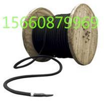 铜芯柔性阳极 缆型阳极 进口柔性阳极 国产柔性阳极